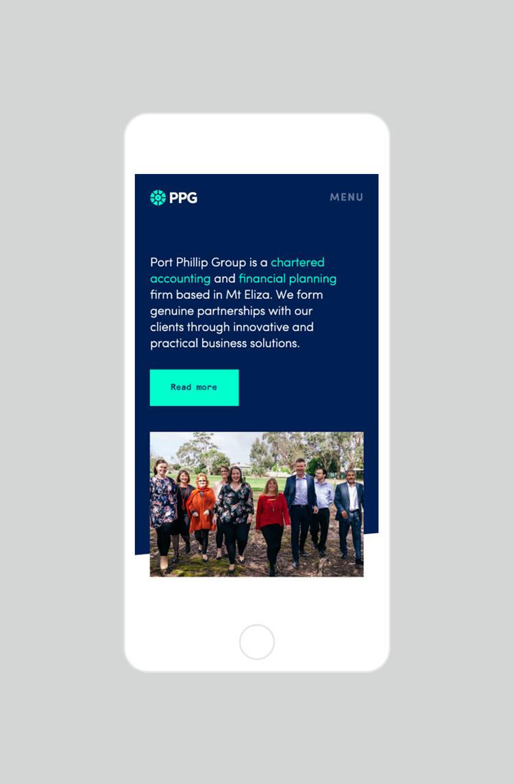 Ppg Phone
